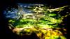 CRD_Sunlight Reflection_Joan McCullough_12