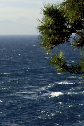 坂から見る海と富士