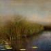Shadows Deep by jamie heiden