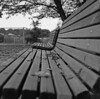 Benches by odeleapple