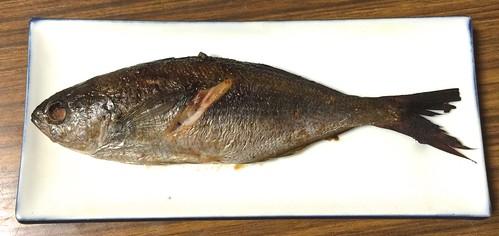 タカベ 魚