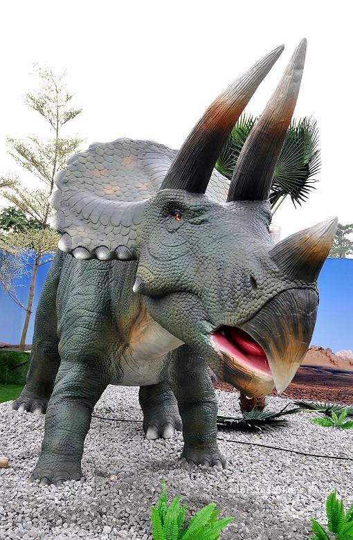 台中恐龍展15
