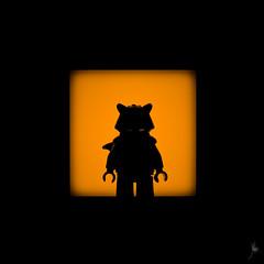 Shadow (46/100) - Rocket