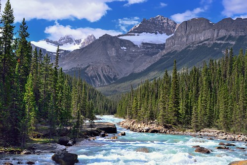 trees canada mountains nature river rapids glacier canvas alberta portfolio day5 banffnationalpark icefieldsparkway canadianrockies highway93 project365 mistayacanyon colorefexpro eccezionale mistayariver mountsarbach mountainsindistance absolutelystunningscapes blueskieswithclouds epaulettemountain kaufmannpeaks nikond800e mountainsoffindistance capturenx2edited lookingssw albertaprovincialhighwayno1a