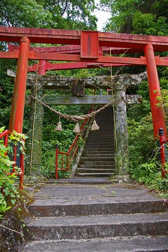 japan shrine inari torii kumamoto kyushu yatsushiro