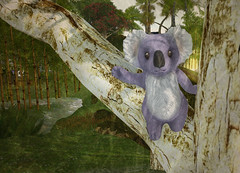 LE Koala GG