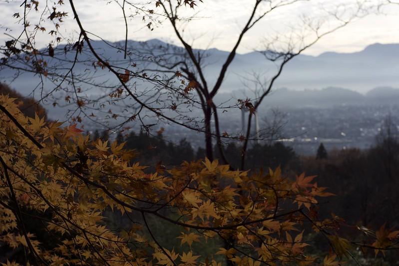 音楽寺参道から秩父盆地を見下ろす