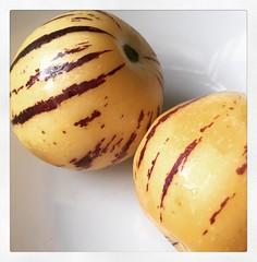 ginsengfruit