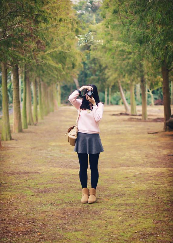 落羽 (16)