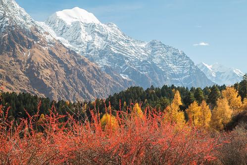 nepal mountain himalaya westernregion shringi manaslucircuit mountainkingdoms samagaun