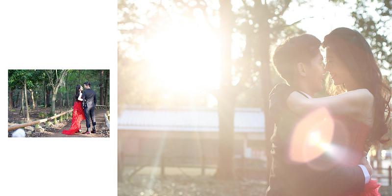 顏氏牧場,後院婚禮,顏氏牧場2,極光婚紗,海外婚紗,京都婚紗,海外婚禮,草地婚禮,戶外婚禮,旋轉木馬_0065