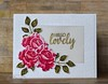 Simply Stamped Roses