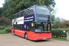Green Bus.