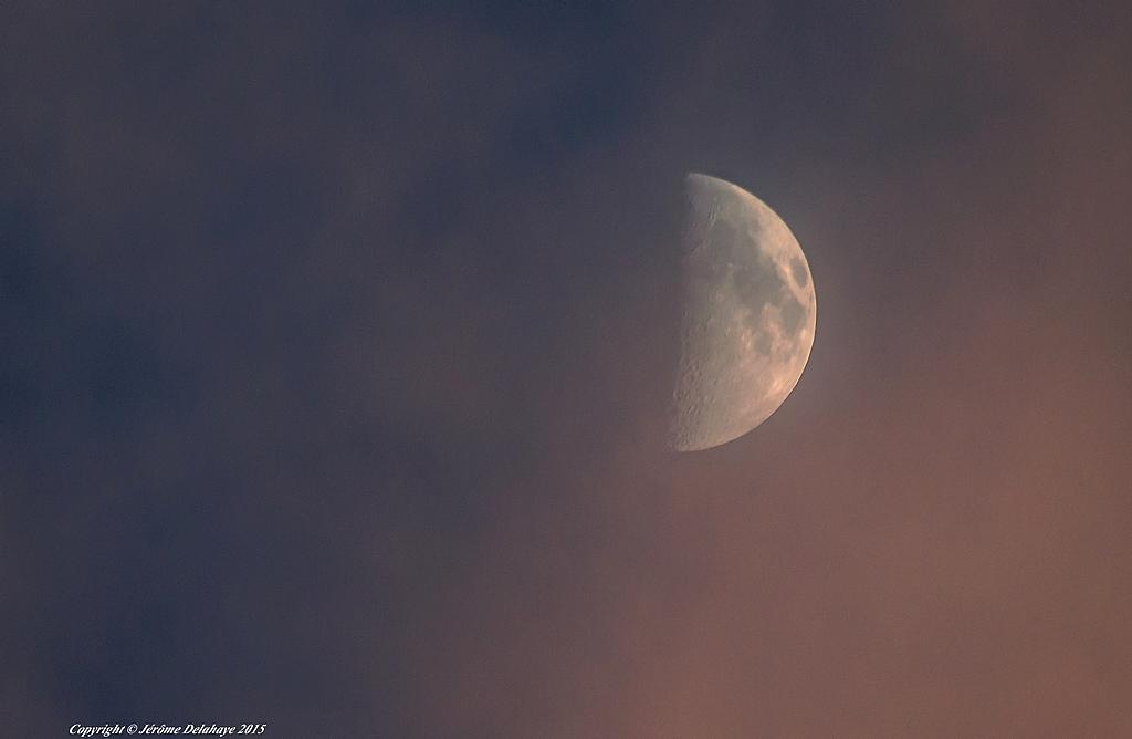Ta vu ma lune... 20184686753_0ce655ed06_b