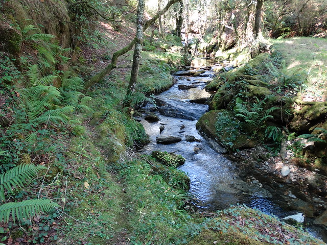 Río de Grobas en Forcarei