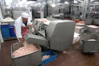 safe meat grinder