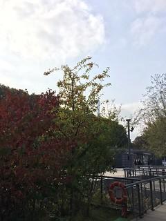 Berges de Seine, Ile Flottante, Tour Eiffel, Eiffel Tower