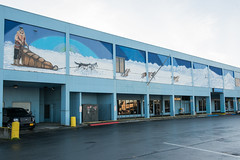 Murals of Anchorage V
