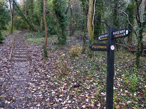 Stairs to the Ridgeway