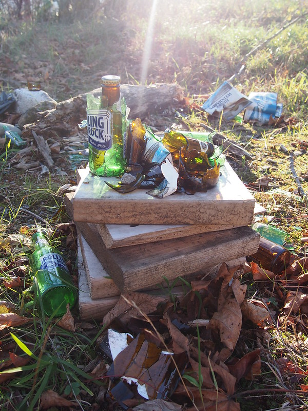 Broken Beer Bottles: Found out in a meadow off the side of the road.
