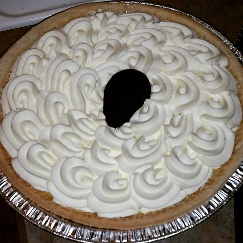 Banana Cream Pie Lapdog Creations