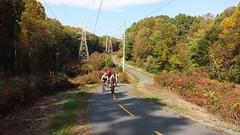 2016 Bike 180: Day 186 - Autumn on the W&OD