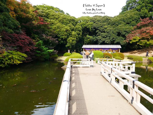 日本東京自由行新宿御苑庭園景點 (24)