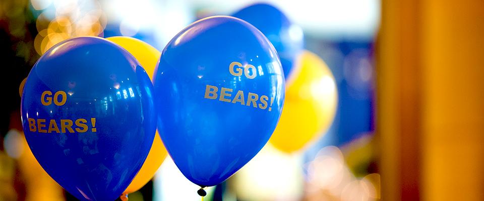 November 22, 2016 - 2:50pm - Balloons