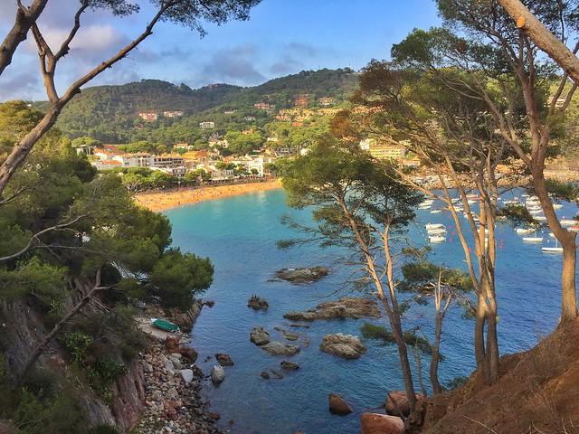 Panorámica del Mediterráneo en el Camino de Ronda de Llafranc a Calella de Palafrugell (Costa Brava)