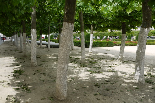 The Garden of Mont des Arts