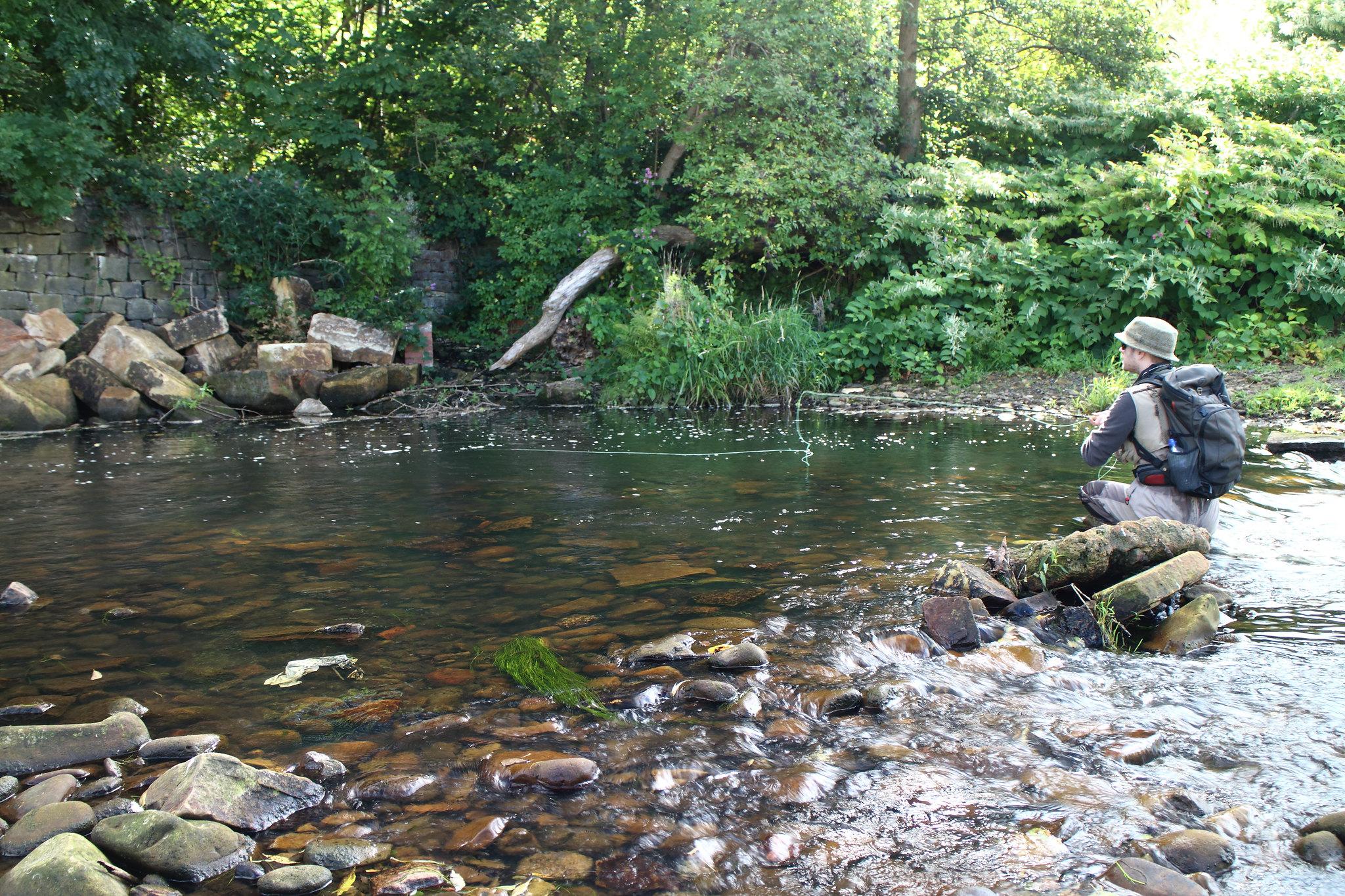 River Don - Steve Morrison