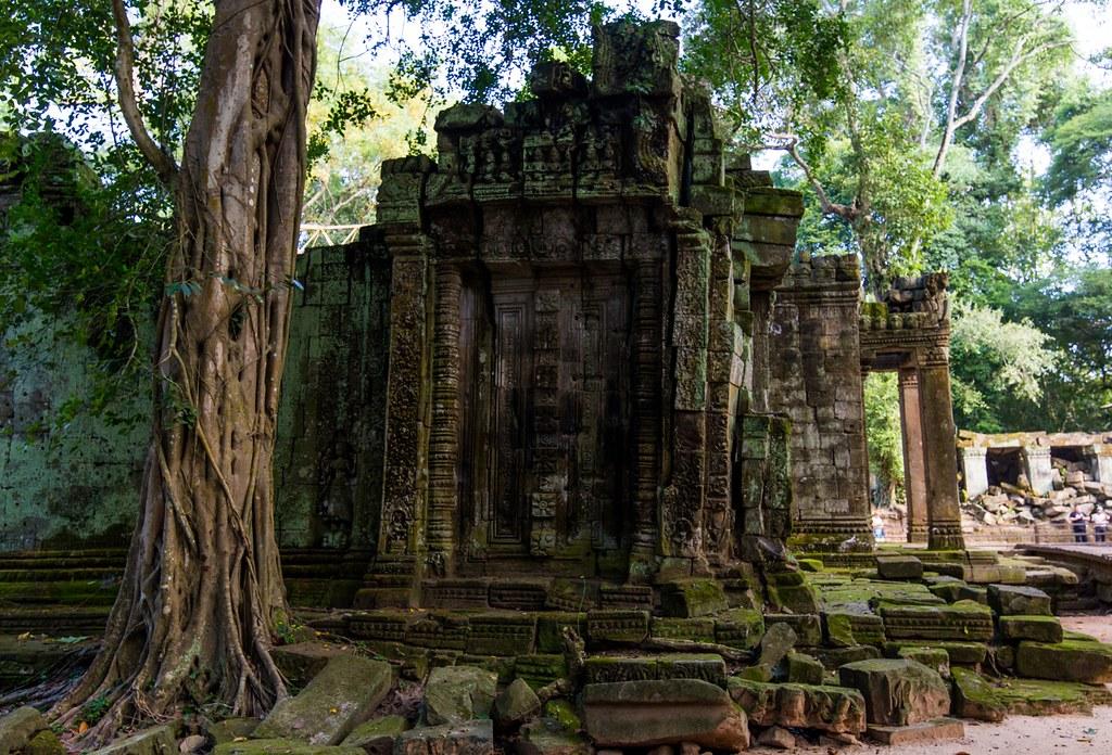 Ta Prohm Angkor-2747
