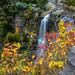 Webster Falls by Luv 2 Flickr