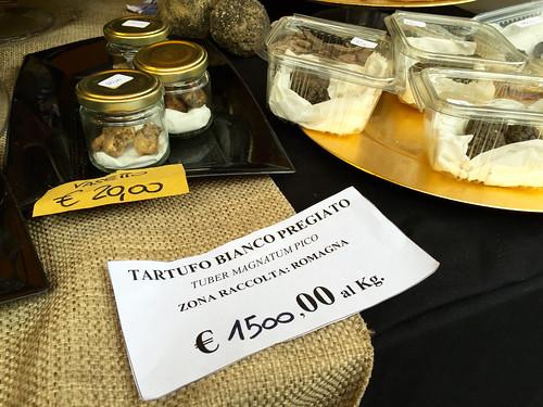 White truffle, €1500 per kilo, Sant'Agata Feltria