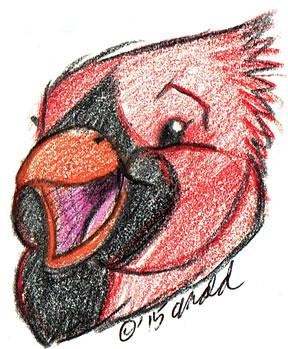 12.11.15 - Cute Cardinal Face