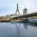 Zakim color reflection