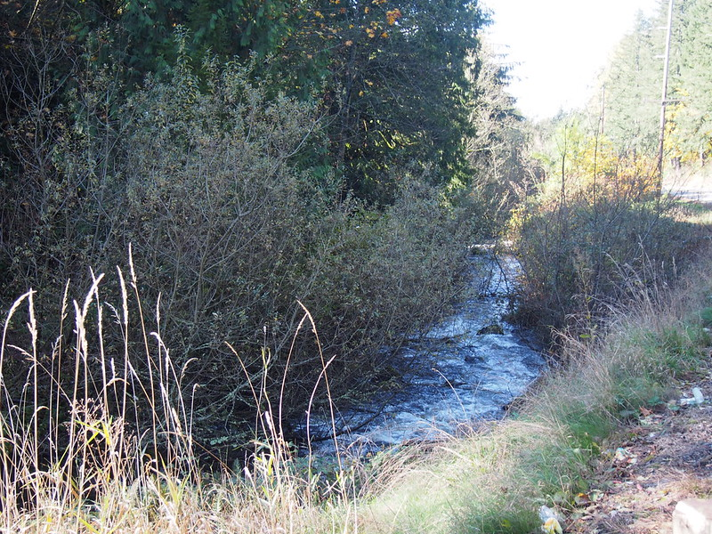 Creek Beside SR-410