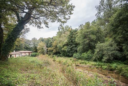 10-Rivière Le Saucats et Moulin de Bernachon