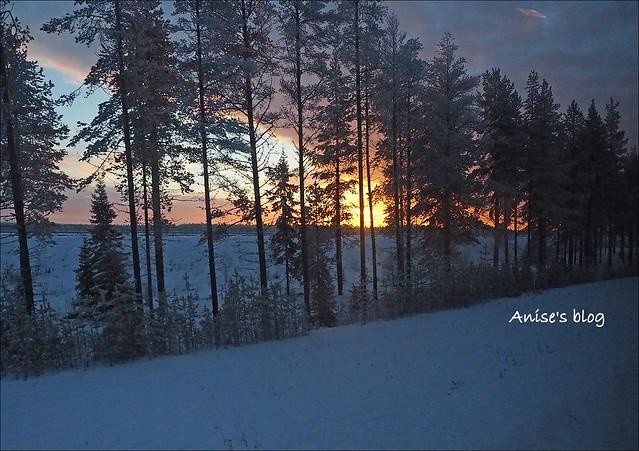 赫爾辛基羅瓦涅米北極特快車臥鋪_065