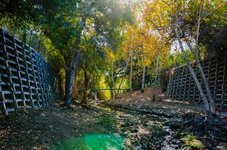Arroyo Calabasas - LA River Headwaters