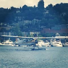 aviation, airplane, vehicle, sea, seaplane,