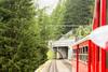 День 5. Ледник Мер-де-Глас - дорога однопутная, имеет 2 разъезда, где ждут встречный поезд.