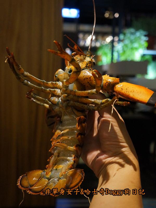 愛新覺羅萬古鍋石板燒海陸大餐09