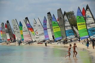 Hobie Cat race boats, Kwale Island, Menai Bay