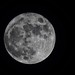 "November's full moon ""Mourning"" Moon is always a signal of the changes to come; as the last full moon before the Winter Solstice by Sue90ca Warmest November On Record?"