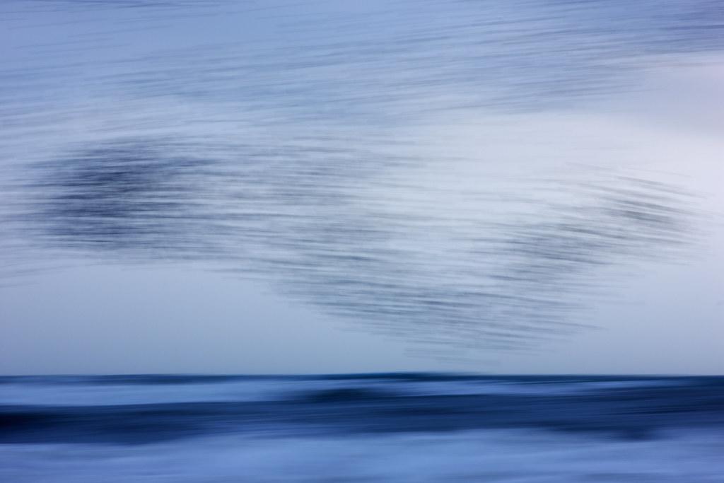 Blurmuration and Stormy Seas