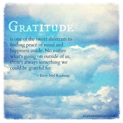 What's on your gratitude list? Please stop by the blog and share. #alphabetsalad #gratitude
