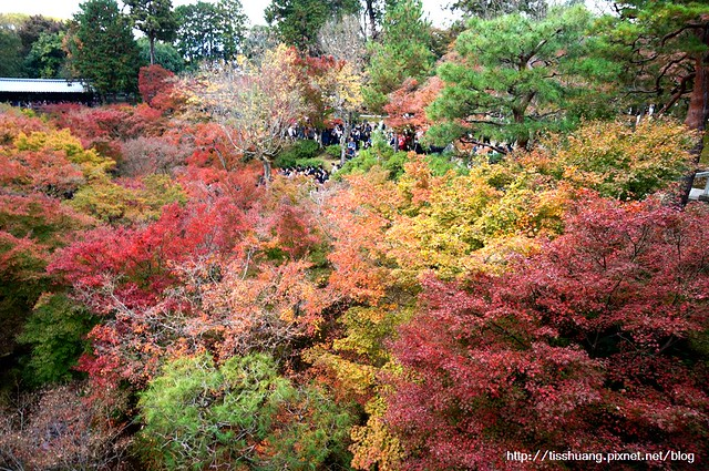 京都第三天129