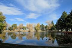 November in City Park