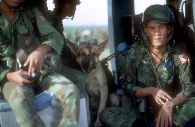 Vietnamese Soldiers by terrybair2012